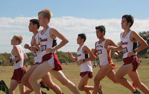 Cross country wraps season at state meet