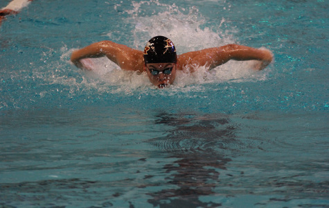 Five swimmers, six relay teams place at district