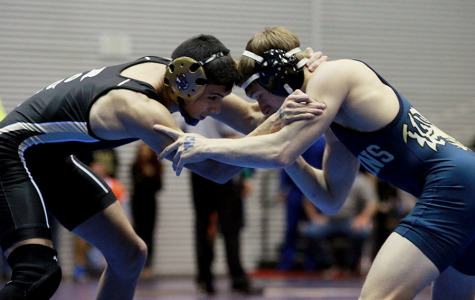 Two wrestlers place at state meet