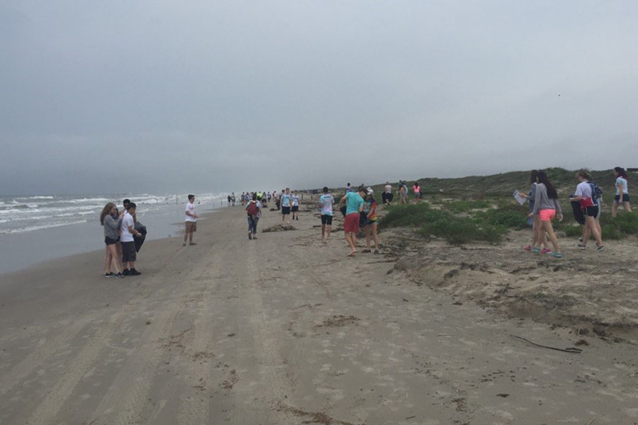 The Eco Club's first beach cleanup was last April.