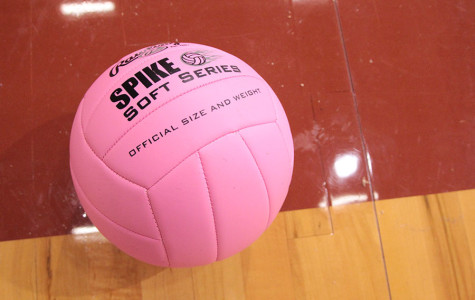 Volleyball selling Dig Pink shirts through Oct. 2