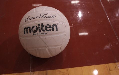 Volleyball back on the court