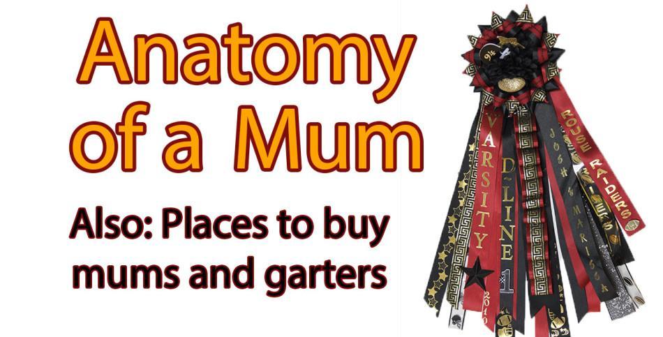 Anatomy of a Mum