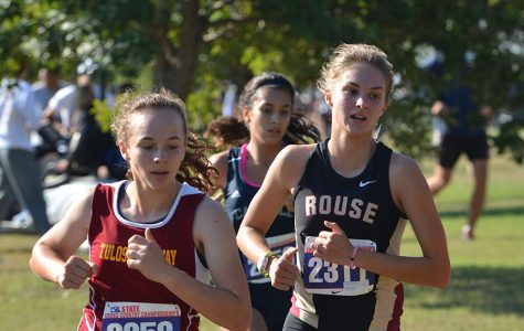 Girls cross country places eighth at state