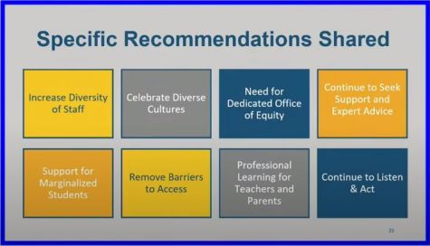 Specific recommendations for the DEI task force.